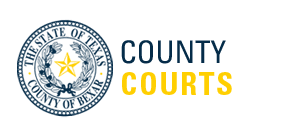 Back to the Bexar County Courts Portal